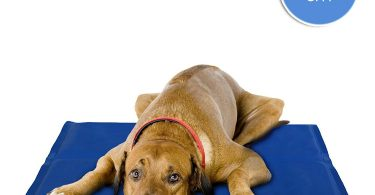 Tapis rafraîchissant pour chien de grande taille