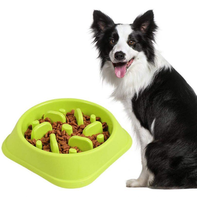 gamelle-anti-glouton-pour-chien